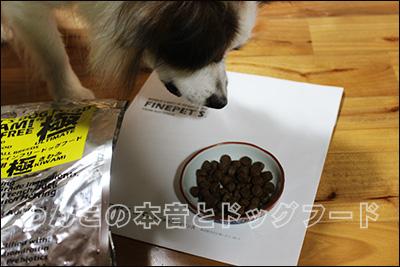 FINEPET'Sドッグフードの「極」を愛犬がつまみ食いしているところ