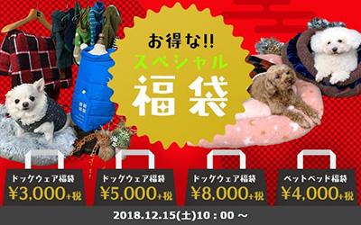 福袋の広告写真